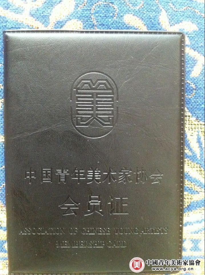 关于中国青年美术家协会会员资格查询申明